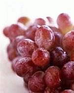 'A kardinális típusú szőlő'