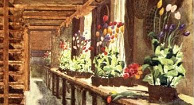 'Hollandia, 1909.'